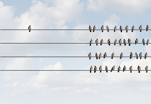 Birds on opposite sides of a wire , representing distinction.